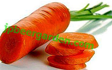 pierderea în greutate purpuroasă de morcov