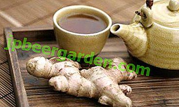 In che modo il tè allo zenzero e altri prodotti possono aiutare a eliminare la tosse e il raffreddore?