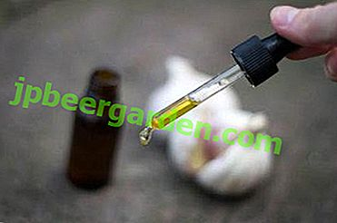 Особливості застосування часнику в ніс - як зробити з нього ефективні краплі від нежиті і інших захворювань?