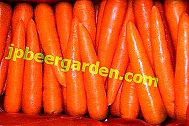 Искате да имате вкусни моркови на склад през цялата зима - най-добрите сортове и начини за съхранението им.  Как да подрязвате зеленчук?