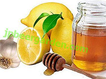 Élixir de guérison à base de vinaigre de miel, citron, ail et cidre de pomme.  Recette et conseils d'utilisation