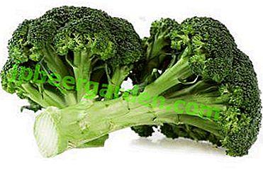 I segreti della coltivazione di broccoli in piena terra.  Suggerimenti per la cura adeguata, foto