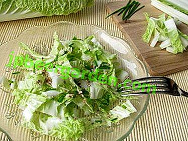 Най-вкусните постни салати от пекинското зеле: прости рецепти със снимки