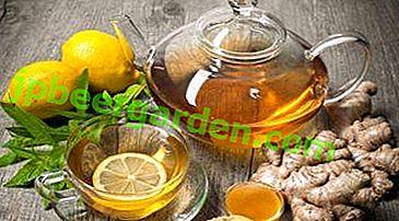 Un outil efficace pour perdre du poids est un mélange de gingembre et de cannelle.  Recettes avec curcuma et autres ingrédients sains