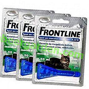 Inoffensif pour votre animal de compagnie, mais sans pitié pour les parasites!  Ligne de front pour chats: prix et mode d'emploi
