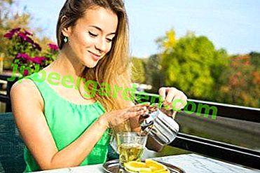 Поради щодо вживання меліси при грудному вигодовуванні: способи приготування і можливі протипоказання