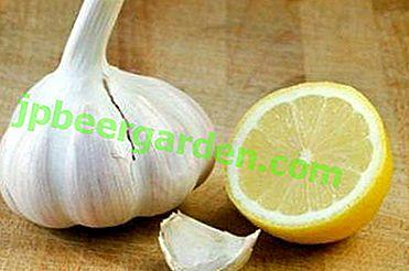 Eine beliebte Kombination aus Knoblauch und Zitrone zur Behandlung verschiedener Krankheiten