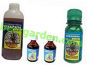 Cucaracha от инструкции за отстраняване на бъгове