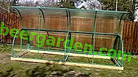 """Récolte de légumes dans la serre """"Courgettes"""" en polycarbonate"""