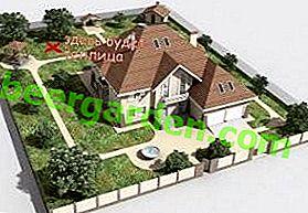 Правила і секрети розташування теплиці на дачі, городі і дахах по сторонах світу