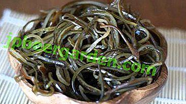 Leckere Rezepte für eingelegten Seetang, seine Vor- und Nachteile