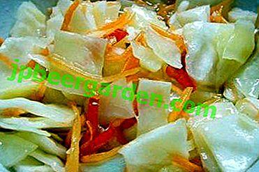 Recettes de chou classique et instantané dans une marinade chaude.  Comment choisir le type de légumes et de saumure?