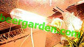 Lămpi de sodiu pentru o seră: caracteristici, principiu de funcționare, tipuri și caracteristici, avantaje și dezavantaje