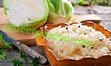 Comment faire cuire le chou, mariné avec du cornichon chaud avec du vinaigre et de l'ail?  Options alimentaires et recette rapide