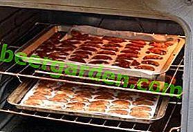Сушене на ябълки в газова фурна за зимата: правила, съвети, рецепти