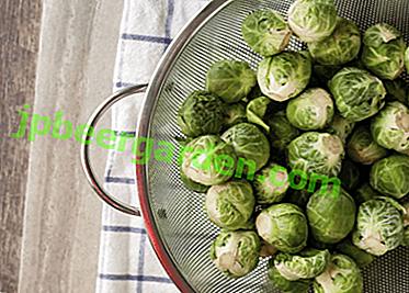 Рекомендації, скільки хвилин і як правильно варити брюссельську капусту
