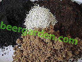 Składniki i skład idealnej gleby na paprykę: na sadzonki i w ogrodzie, jak gotować własnymi rękami