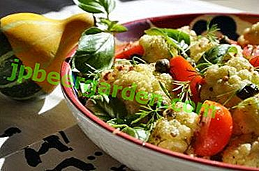 ТОП 7 най-добри рецепти за салата от карфиол и броколи със снимки