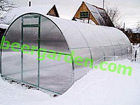 Nous créons une serre d'hiver en polycarbonate avec notre propre chauffage: les nuances de la construction et du chauffage