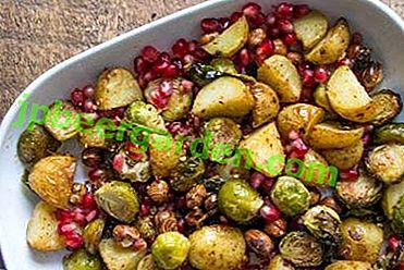 15 délicieux plats de choux de Bruxelles avec poulet, bacon et autres produits