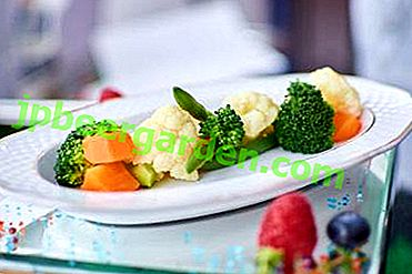 Einfach, lecker und sehr gesund - Rezepte aus grünen Bohnen und Blumenkohl
