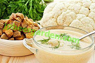 Prepariamo le più delicate zuppe di crema di cavolfiore con panna, curry e su un delizioso brodo