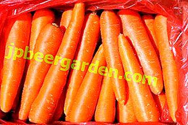 Note aux hôtesses: est-il possible de congeler des carottes entières ou râpées pour l'hiver?  Conseils pour conserver les racines dans la chambre