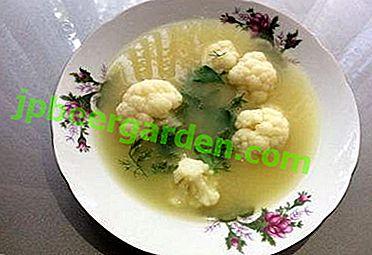 Vous vous léchez les doigts - une délicieuse soupe avec du chou-fleur et du poulet!  Recettes de cuisine