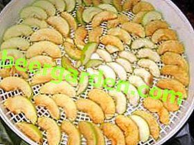 Wie man Äpfel in einem Slow Cooker trocknet: wichtige Nuancen und Wege