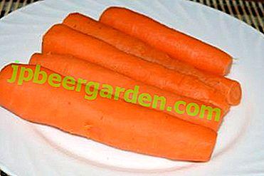 Beneficiile și posibilele vătămări ale morcovilor fierti.  Cum se folosește pentru tratament și cosmetologie?