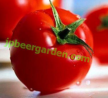 """Sorten Tomate """"Riddle"""": Eigenschaften, Beschreibung und Foto der ultra-reifen Tomate"""